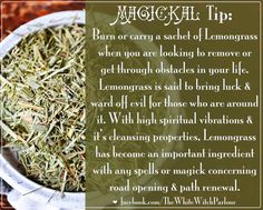 lemongrass, lemon grass, smudge, book of shadows, obstacle removal, road,opening, path, renewal, spiritual, magick, magic, properties, correspondence, spell, meaning, witch, wicca, ward off evil, cleansing, sachet, herb, dried, botany, botanical #whitewitchparlour https://www.facebook.com/TheWhiteWitchParlour