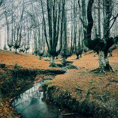 Photo by jdelrivero | VSCO | http://vsco.co/vsco
