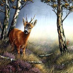 Deer in forest Canvas Art - Jan Weenink x Wildlife Paintings, Wildlife Art, Landscape Paintings, Deer Pictures, Fall Pictures, Fall Pics, Deer Art, Moose Art, Deer Drawing