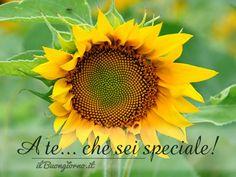 A te... che sei speciale!