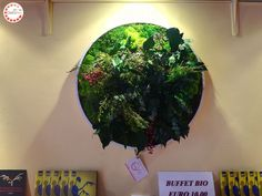 green wall, quadro in lichene stabilizzato forest moss Buffet, Buffets, Catering Display, Lunch Buffet