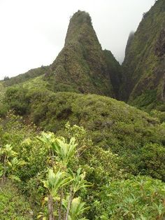 Iao Valley State Park, Hawaii | Wendy Osher via Maui Now