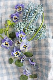 You can`t use up CREATIVITY. Love Blue, Blue And White, Flower Vases, Flower Arrangements, Pieris Japonica, Vibeke Design, Container Flowers, Pansies, Blue Bird