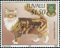 Tuvalu 1997 Cat Stamps - American Maine Coon