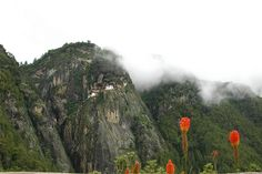Taksang Temple and flowers