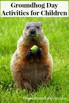 Groundhog Day Activities for Kids - games, educational activities, recommended books, and shadow play