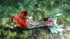 Mermaid Island, Mermaid Cove, Mermaid Swim Tail, Mermaid Swimming, Mermaid Pictures, Mermaids And Mermen, Merfolk, Imagination, Draw