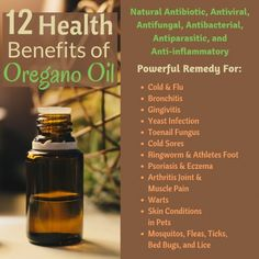 Oregano is a well-known food seasoning but what many don't know are it's various health benefits. Oregano oil is a very powerful natural remedy for many health issues. Oregano Essential Oil, Essential Oil Uses, Doterra Oregano Oil, Natural Cures, Natural Healing, Watermelon Health Benefits, Oregano Oil Benefits, Natural Antibiotics, Healing Oils