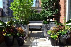Upper East Side Terrace Garden in NYC by with custom planters and fencing by Jeffrey Erb Landscape Design. The metal-clad planters were placed in coordination with the furniture to create the feel of more intimate rooms on this exposed terrace. Patio Trees, Potted Trees, Patio Design, Garden Design, Pot Jardin, House Design Photos, Outdoor Seating Areas, Traditional Landscape, Terrace Garden
