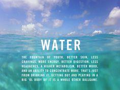 swellivin water