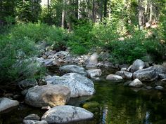 Lake Alpine to Rock Lake: hiking South Tahoe to Yosemite Trail
