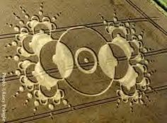 The Truth About Crop Circles, really cool to read. Crop Circles, Ancient Aliens, Ancient Art, Laser Art, Messages, Sacred Geometry, Geometric Shapes, Malang, Graffiti
