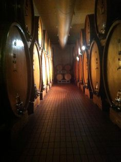 di is taking shape and we're eager to taste it! Wine And Liquor, Wine Drinks, Brunello Di Montalcino, Wine Vineyards, Italian Wine, Wine Making, Wine Cellar, Wine Country, Italy Travel