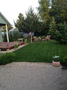 Patio, Garden, Outdoor Decor, Plants, Home Decor, Garten, Decoration Home, Room Decor, Lawn And Garden