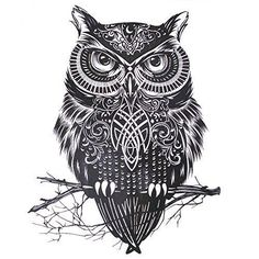 Best Owl Tattoos for Guys for the arm, thighs, wrist, chest or shoulders. Cute, small and colorful owl tattoos for girls for inspiration and ideas.