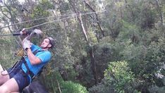 Tsitsikamma Canopy Tour - Linda Armstrong Unzipping Adventure Canopy, Lush, Photo Galleries, Tours, Adventure, Canopies, Fairytail, Adventure Nursery, Fairy Tales
