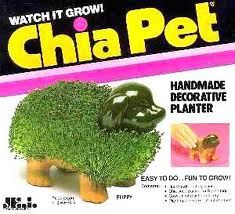 Chia Pet. I finally got one of these from my husband a few years back. These things require more work than the box leads you to believe!