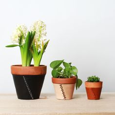 Leather-wrapped planters from Scarr Co.