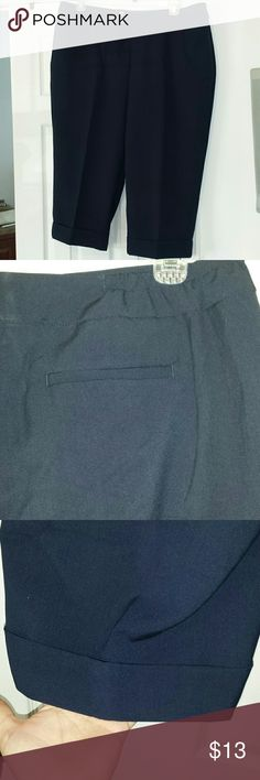 CJ Banks 20w capri CJ Banks 20w capri pants. Navy blue. Cuffed leg. See second picture for stretch sides at waist. Two button/zip closure. Great for work or church. CJ Banks Pants Capris