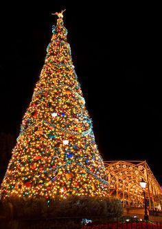 Such a beautiful Christmas Tree! Noel Christmas, Disney Christmas, Little Christmas, Outdoor Christmas, All Things Christmas, Disney Holidays, Happy Holidays, Christmas Glitter, Christmas Scenes