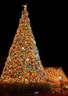 Disneyland paris 39 main street at christmas main street for Sleeping with window open in winter