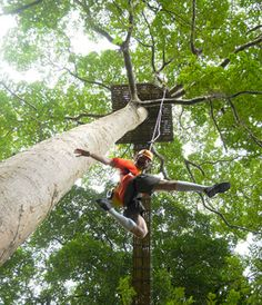 Zipline Adventure, Patong Beach, Day Tours, Phuket, Opportunity, Travelling, Activities, City, Check