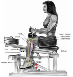Strength training - Seated Calf Raise Leg And Glute Workout, Gym Workout Tips, At Home Workout Plan, Fun Workouts, Glute Workouts, Week Workout, Bodybuilding Supplements, Bodybuilding Workouts, Leg Training