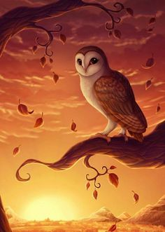 Owl art by ©DolphyDolphiana Owl Artwork, Owl Wallpaper, Owl Illustration, Owl Pictures, Beautiful Owl, Spirit Animal, Amazing Art, Fantasy Art, Art Projects