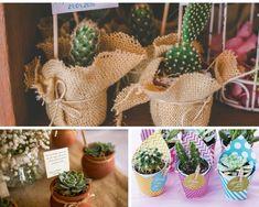 Como cuidar de cactos Cactus Plants, Garden, Blog, Succulents In Glass, Succulents Garden, Cactus Types, Cement Crafts, Picture Frame Art, Growing Plants