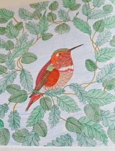 I Colored This To Be A Rufous Hummingbird From Animal Kingdom Coloring Book