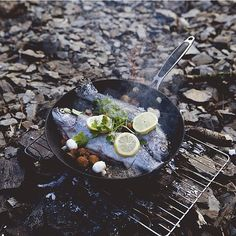 Whole fish skillet over the campfire. Camping And Hiking, Camping Life, Camping Meals, Camping Grill, Camping Cooking, Camping Stuff, Camping Outdoors, Fire Cooking, Outdoor Cooking
