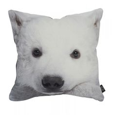 A kids cushion with a digital print of a Baby Polar Bear in  cotton canvas quality fitted with a hypoallergenic fibres cushion.
