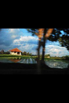 [reticoli di campi cesellati, di cui non percepisci mai l'arsura] Bali, la mia estate. Testo: Daniele Silvestri, Acrobati