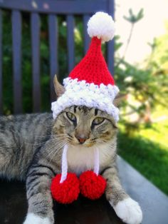Santa Cat Dog Hat Costume - The Santa Claws Hat for Cats and Small Dogs - Christmas Hat for Pets