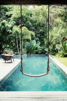 Having a pool sounds awesome especially if you are working with the best backyard pool landscaping ideas there is. How you design a proper backyard with a pool matters. Swiming Pool, Swimming Pools Backyard, Swimming Pool Designs, Garden Pool, Pool Landscaping, Indoor Pools, Small Swimming Pools, Luxury Swimming Pools, Lap Pools