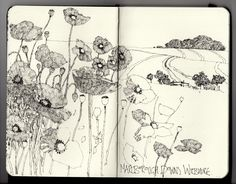 Ian Sidaway Fine Line: Marlborough Downs. Amazing daily moleskin drawings