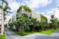 Vertical garden idea from Vietnam