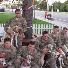 """National Guard soldiers from New York were reunited Wednesday with a stray dog and her seven puppies who had become """"part of the family"""" while they were stationed in Afghanistan."""