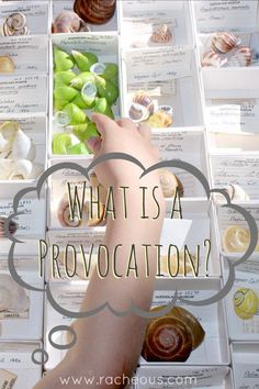 What is a Provocation - Reggio Inspired Learning | Racheous - Lovable Learning