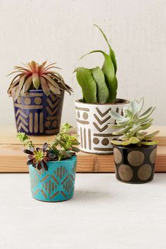 Assembly Home Jada Planter - Urban Outfitters awesome patterned pots and houseplants succulents Painted Plant Pots, Painted Flower Pots, Painted Pebbles, Diy Planters, Ceramic Planters, Succulent Pots, Succulents, Design Patio, Pot Plante