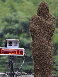 Mr Wang won the bee-wearing competition after he attracted 26 kg (57lb) of bees onto his body in 60 minutes.