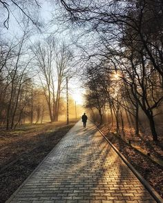 10 Must See Smartphone Photos That Use Leading Lines