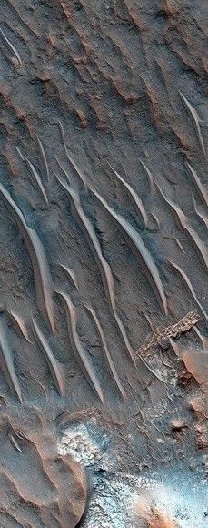 These thick, dune-like features on Mars are called transverse aeolian ridges, or TARs; the features stand up to 6 meters tall and are spaced a few tens of meters apart. They are typically oriented transverse to modern day wind directions, and often found in channels and crater interiors. Here they've formed in an area called called Iapygia, which is south of Syrtis Major. This image was captured from orbit by HiRISE.