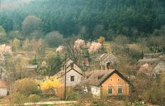 Discover the world through photos. Hungary, Sweet Home, Country, World, House, Painting, House Beautiful, Rural Area, Home