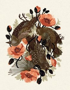 Spangled & Plumed by Teagan White, via Behance