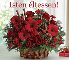 and The scents of the greens, bold and sticks make this a floral arrangement for gatherings.A handled basket of red flowers including roses, red gerbera daisies and carnations is topped with festive cinnamon sticks. Christmas Flower Arrangements, Cheap Flowers, Christmas Flowers, Beautiful Flower Arrangements, Romantic Flowers, Floral Arrangements, Beautiful Flowers, Christmas Centerpieces, Red Flowers