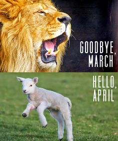 Kelsey, Imagined: Goodbye March, Hello April