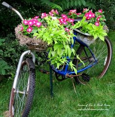 Bicycle planter - one of the many unique ideas in this garden…