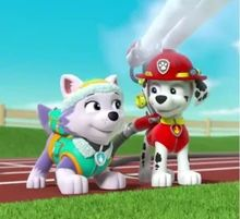 Paw Patrol, Marshall and Everest Mouthless by on DeviantArt Paw Patrol Everest, Los Paw Patrol, Paw Patrol Marshall, Sandy From Spongebob, Mermaid Wallpapers, Animal Party, Pup, Fan Art, Deviantart