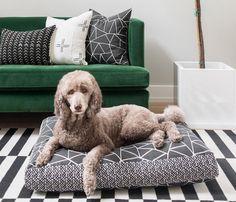 Black and White Gemstone Designer Dog Bed / Waterproof Dog Bed / Onyx Dog Bed / Washable Large Geometric Modern Dog Bed / Charlie Cushion Dog Crate Cover, Large Dog Crate, Ugly Animals, Designer Dog Beds, Street Dogs, Duvet Bedding, Bed Duvets, Pet Odors, Bed Duvet Covers